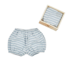 Bloomers in a Box – Stripe